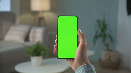 Vertical cellphone with a chroma key screen