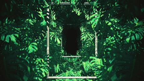 Vertical frames between tropical tree leaves