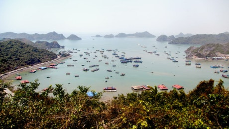 Vietnam bay filled with boats