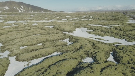 Volcanic rock field