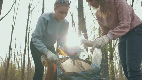 Volunteers cleaning up garbage in a forest