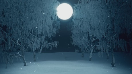 Walking in the winter forest towards the full moon