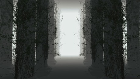 Walking through a forest with virtual fog, 3D loop