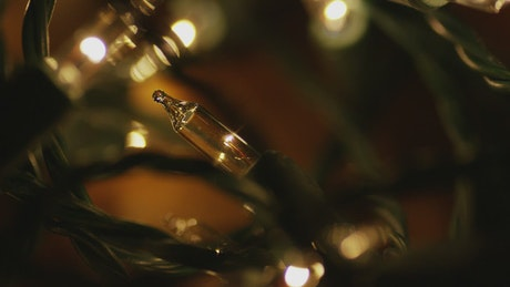 Warm ornamental Christmas lights