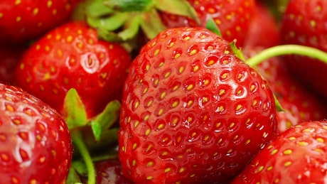 Washing strawberries close up