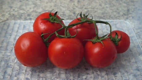 Washing tomatoes, slow motion