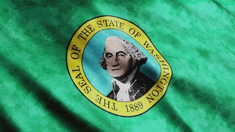 Washington State 3D flag