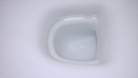 Water flushing down a toilet