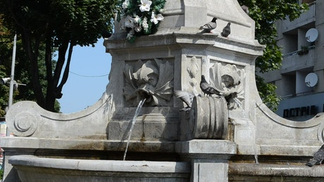 Water fountain with birds