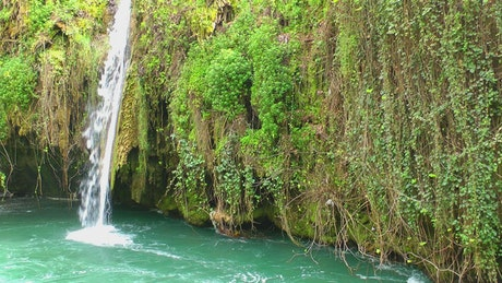 Waterfall in a covered cenote vegetation
