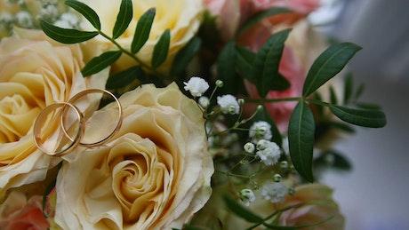 Wedding rings over yellow flowers