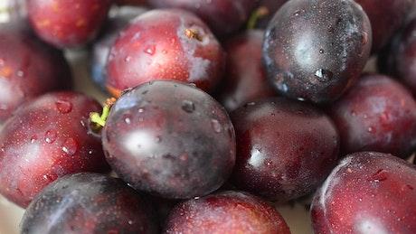 Wet plums texture