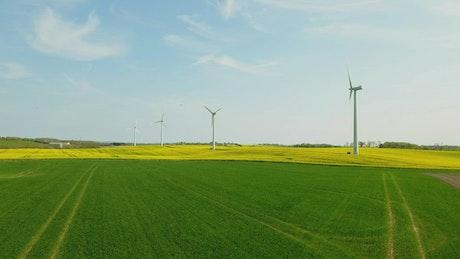 Wind farm in the sun