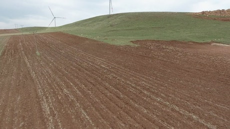 Wind turbines in a vast green plain