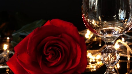 Wine glass and a rose