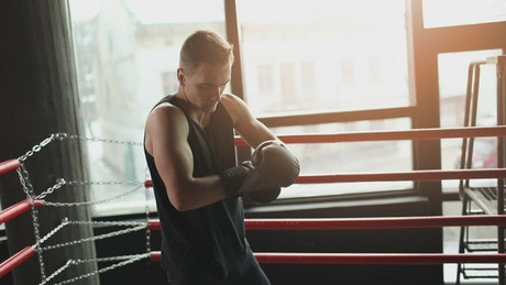 Winner prepares for boxing match in ring