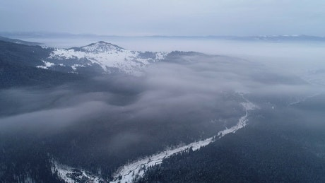 Winter forest during sunrise, aerial view