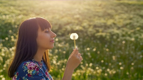 Woman blowing on a dandelion in the meadow