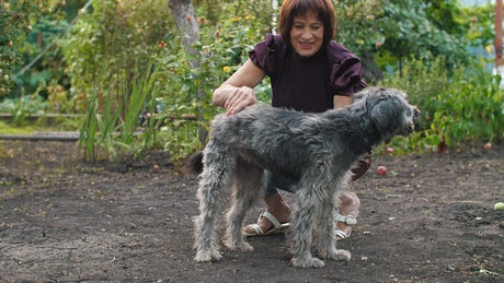 Woman caresses her dog in the garden