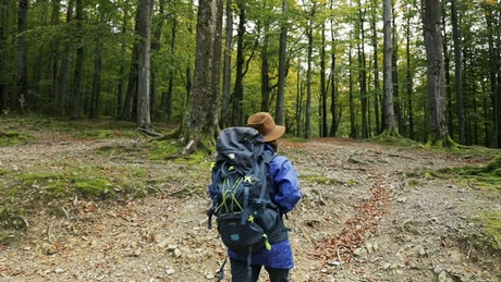 Woman hiking freely in mossy spring forest
