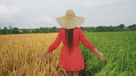 Woman in dress walking between agriculture fields