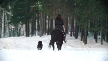 Woman on a horse galloping through a snowy forest