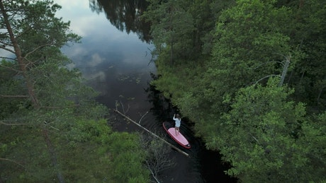 Woman on a paddleboard on forest river