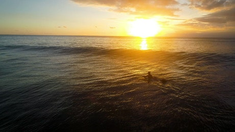 Woman paddles surfboard over wave into setting sun