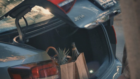 Woman picking groceries from her car