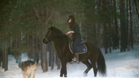 Woman riding a horse in a snowy forest