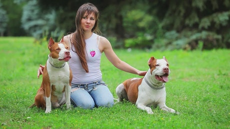 Woman strokes her dogs on the grass
