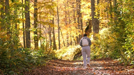 Woman taking a walk in the autumnal forest
