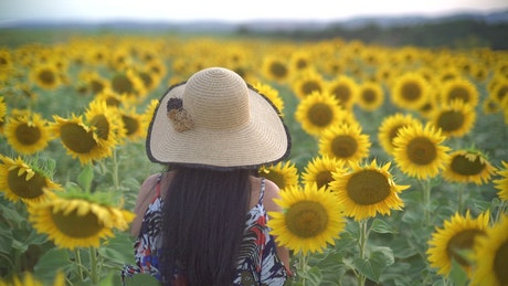 Woman walking through a sunflower field