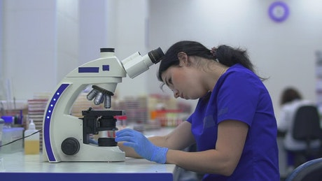 Woman working with microorganisms in a laboratory