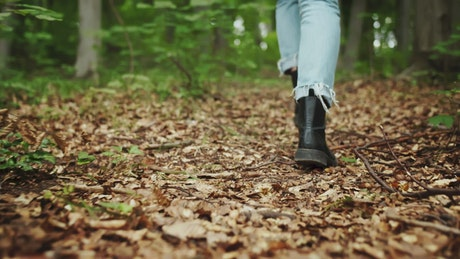 Woman's legs in jeans walk through forest