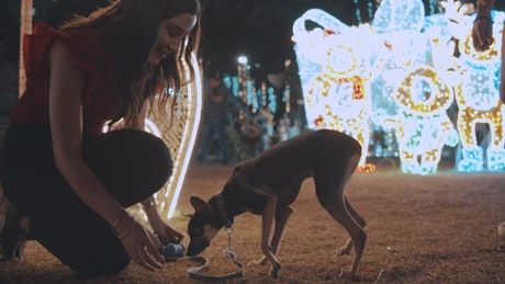 Women feeding a puppy in a Christmas park at night