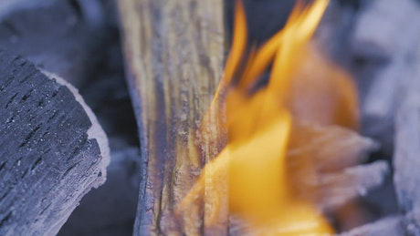 Wood being burned by fire