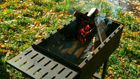 Wood burning in the grill
