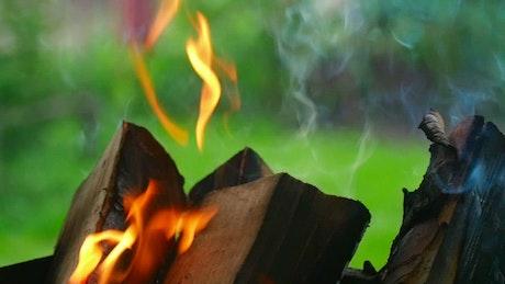 Wood chunks burning