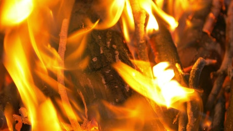 Wooden logs burning on a fire
