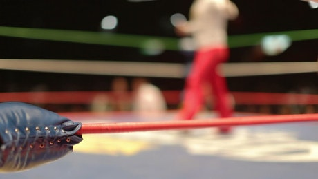 Wrestling ring with fighters
