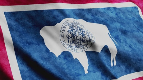 Wyoming State flag, 3D animation