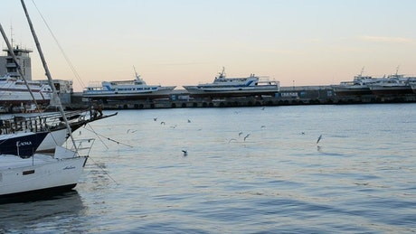 Yachts anchored alongside a drydock