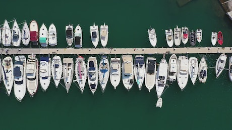 Yachts anchored in a line