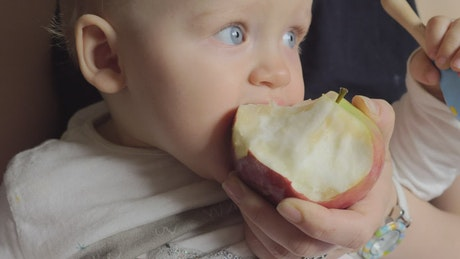 Young baby eating an apple