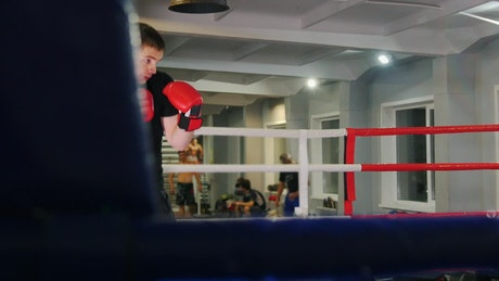 Young boxer training hard on a ring