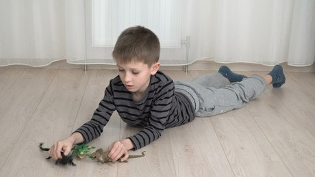 Young boy playing with a toy Dinosaur