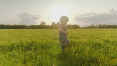 Young boy walking through a field