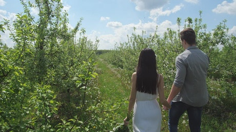 Young couple together in an orchard